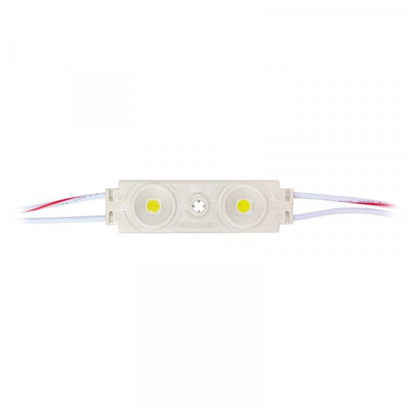 LED Modul 2 x SMD (5050) LEDs weiss