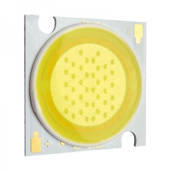 COB-Hochleistung-LED 20W tageslichtweiss BLANKO