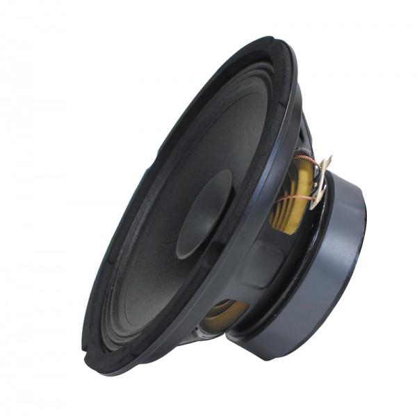 PA Bass Fullrange 250 mm BLANKO Gitarrenlautsprecher