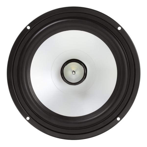 Kenford Bass mit Dom weiss DYG-820A white